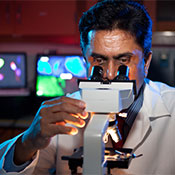 Dr. Kanthasamy with microscope